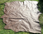MARITIMUS leather - cowhide, brown, size approx 2x3m